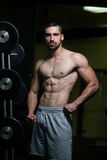 Healthy Man With Six Pack Stock Images