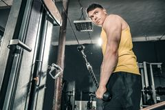 Healthy man working out in gym doing triceps exercises. Photos taken on an atmospheric old gym Stock Image