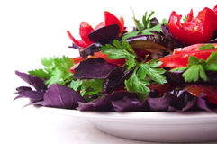 A healthy meal Stock Photography