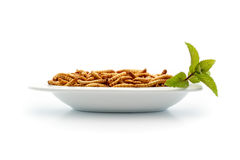 Healthy mealworms on small plate with decoration stock images