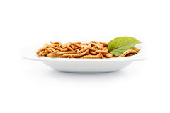 Healthy mealworms on white plate with decoration Royalty Free Stock Photos
