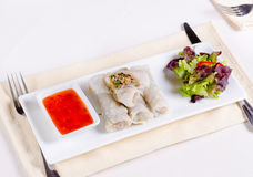 Healthy Meaty Spring Rolls with Veggies and Sauce Stock Image