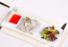 Healthy Meaty Spring Rolls with Veggies and Sauce Royalty Free Stock Photo
