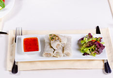 Healthy Meaty Spring Rolls with Veggies and Sauce Stock Photo