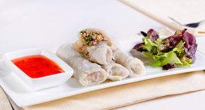 Healthy Meaty Spring Rolls with Veggies and Sauce Stock Images