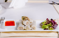 Healthy Meaty Spring Rolls with Veggies and Sauce Royalty Free Stock Photos