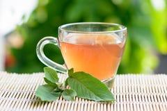 Healthy Medicine sage tea Stock Photography