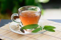Healthy Medicine sage tea Stock Photo