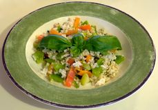 Healthy mediterranean salad. Photograph of a healthy low-calorie mediterranean salad dish with rice and fresh vegetables and herbs Royalty Free Stock Image