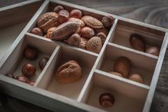 Healthy mix nuts on wooden background. Walnut, hazelnut, almond and pecan. stock photography