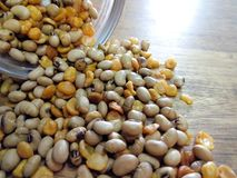 Healthy Mix Roasted ฺBeans. royalty free stock photos