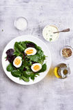 Healthy mix salad with eggs and greens Royalty Free Stock Images