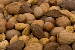 Healthy mixed nuts Royalty Free Stock Images