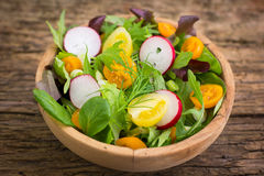 Healthy mixed salad in the bowl. Close up stock photography