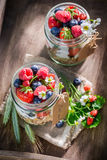 Healthy muesli with berry fruits and yogurt in sunny day Royalty Free Stock Photos
