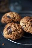 Healthy muesli cookies Royalty Free Stock Images