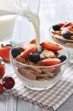 Healthy muesli and fresh berries Stock Photo