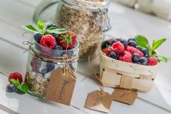 Healthy muesli with yogurt and berry fruits Stock Photos