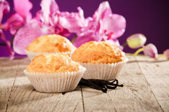 Healthy muffins stock image
