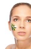 Healthy natural cosmetics Royalty Free Stock Image