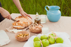 The healthy natural food in the field. Family dinner Royalty Free Stock Photos