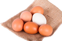 Healthy Natural Organic Eggs Royalty Free Stock Image