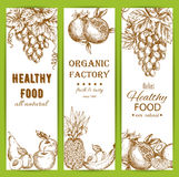 Healthy natural organic fruit food sketch banners. Healthy fruit food banners set. Vector sketch of natural organic fruits Royalty Free Stock Image