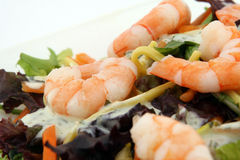 Healthy noodle and prawn diet salad starter. Healthy Chinese - Asian King prawn shrimp salad, consisting of noodles, peppers, lettuce and sauce on white, macro Stock Photography