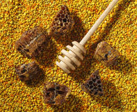 Healthy nutrition bee pollen granules, honeycomb and bee bread Stock Photography