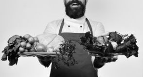 Healthy nutrition and cuisine concept. Man with beard on white background. Chef holds vegetables. Healthy nutrition and cuisine concept. Man with beard on white stock photography