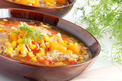 Chicken corn and squash soup Royalty Free Stock Photo