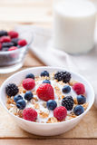 Healthy and nutritious yoghurt with cereal and fresh raw berries. Healthy and nutritious bio yoghurt with cereal and fresh raw berries Stock Photography