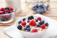 Healthy and nutritious yogurt with cereal and fresh raw berries. Healthy and nutritious bio yogurt with cereal and fresh raw berries Royalty Free Stock Photo
