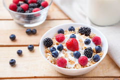 Healthy and nutritious yogurt with cereal and fresh raw berries. Healthy and nutritious bio yogurt with cereal and fresh raw berries Stock Images