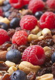 Healthy Nuts and Berries Stock Images