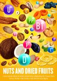 Multivitamins complex in nuts and dried fruits stock illustration