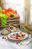 Healthy oat flakes with berry fruits for breakfast Stock Photos