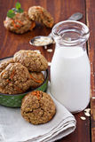Healthy oatmeal carrot cookies Royalty Free Stock Image