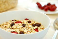 Healthy Oatmeal With Raisins And Dates Royalty Free Stock Photography