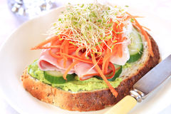 Healthy Open Sandwich with Sprouts Royalty Free Stock Image