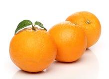 Healthy orange isolated Stock Photos