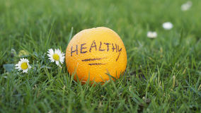 Healthy orange Royalty Free Stock Photos