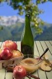 Healthy Organic Applesauce with Cinnamon Royalty Free Stock Photos