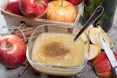 Healthy Organic Applesauce with Cinnamon. In a Bowl Royalty Free Stock Image