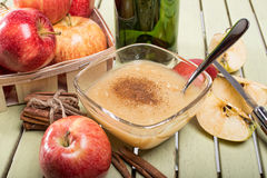Healthy Organic Applesauce with Cinnamon. In a Bowl Stock Image