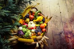 Healthy organic bio fruit and vegetable. In a basket. Autumn harvest concept Stock Photography