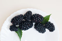 Healthy organic blackberry vegetarian diet sweet snack on white plate Stock Photos