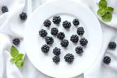 Healthy organic blackberry vegetarian diet sweet Royalty Free Stock Photos