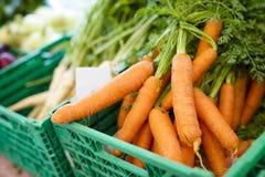 Healthy organic carrots at farmers market Royalty Free Stock Image