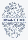 Healthy Organic eco vegetarian food design vector template Stock Photo